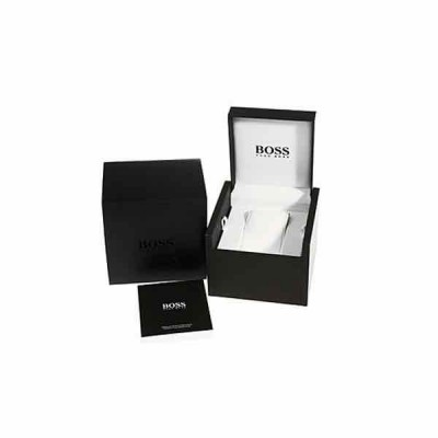 Hugo Boss Watch 1513043